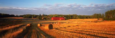 Hay Bales in a Field, Flen, Sodermanland County, Sweden--Photographic Print