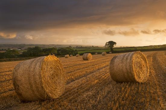 Hay Bales in a Ploughed Field at Sunset, Eastington, Devon, England. Summer (August)-Adam Burton-Photographic Print