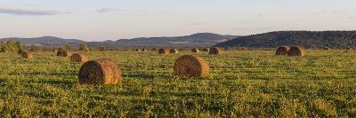 Hay Bales , the International Appalachian Trail. Merrill, Near Smyrna Mills-Jerry and Marcy Monkman-Photographic Print