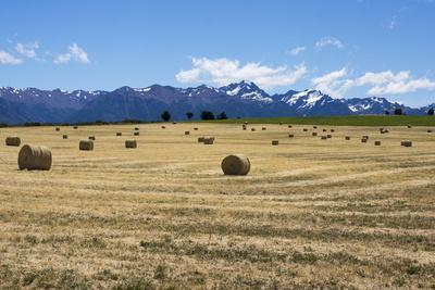 Hay Field in the Landscape, Patagonia, Argentina-Peter Groenendijk-Photographic Print