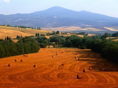Hay Field with Monte Amiata Behind, Near Pienza, Tuscany, Italy-David Tomlinson-Photographic Print