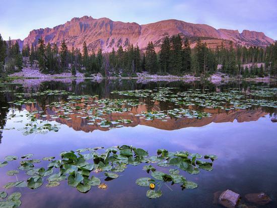 Hayden Peak Reflection Into Erfly Lake Uinta Range Utah Photographic Print By Tim Fitzharris Art