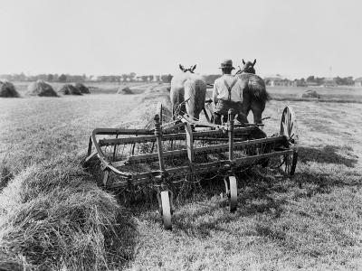 Haymaking in Canada--Photographic Print