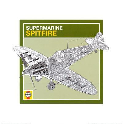 Haynes: Supermarine Spitfire--Art Print