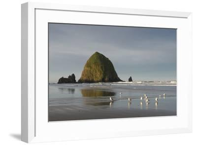 Haystack Rock on Cannon Beach, Oregon-Greg Probst-Framed Premium Photographic Print