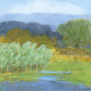 American Fields by Hazel Barker