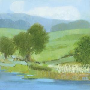 American Lands by Hazel Barker