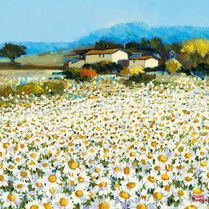 Farm Near Bini by Hazel Barker