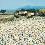 Le Jardin Rouge, Provence-Hazel Barker-Premium Giclee Print