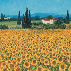 Farm Near Siena by Hazel Barker