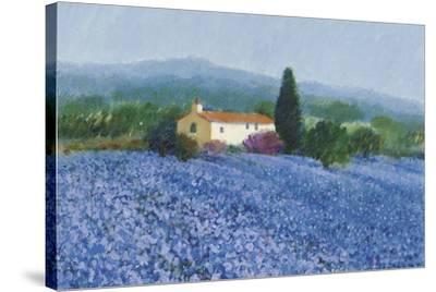 Flax Field, Provence