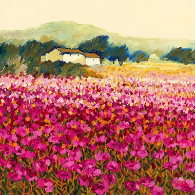 Le Jardin Rouge, Provence