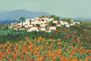 Majocar, Andalucia by Hazel Barker