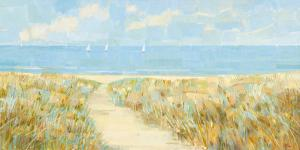 Sailing at Sandy Bay by Hazel Barker