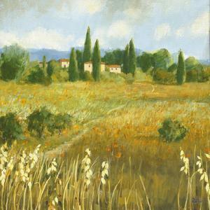 Summer Villa by Hazel Barker