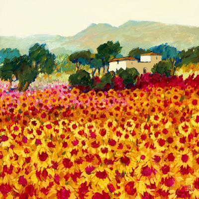 Sunflower Sunset, Tuscany