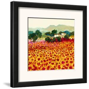 Sunflower Sunset, Tuscany by Hazel Barker