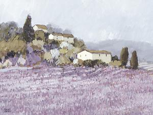 Tranquil Wild Lavender, Provence by Hazel Barker