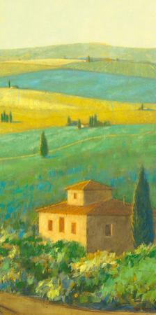 Tuscan Landscape II