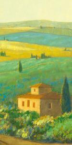 Tuscan Landscape II by Hazel Barker