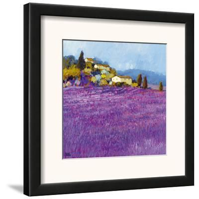 Wild Lavender, Provence