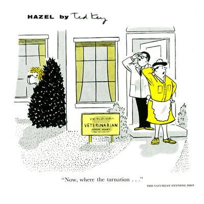 https://imgc.artprintimages.com/img/print/hazel-cartoon_u-l-py2ktr0.jpg?p=0