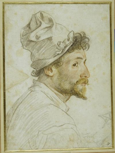 Head and Shoulders of a Bearded Man Wearing a Cap-Federico Zuccaro-Giclee Print