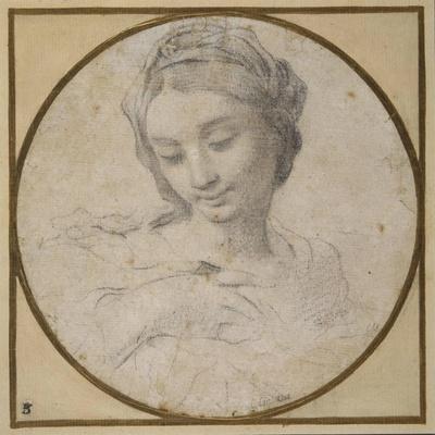 https://imgc.artprintimages.com/img/print/head-and-shoulders-of-the-virgin_u-l-pllwt80.jpg?p=0