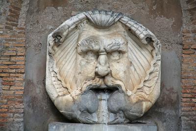 Head as Fountain--Giclee Print