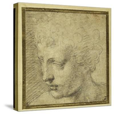 Head of a Boy, Nearly in Profile to the Left-Parmigianino-Stretched Canvas Print