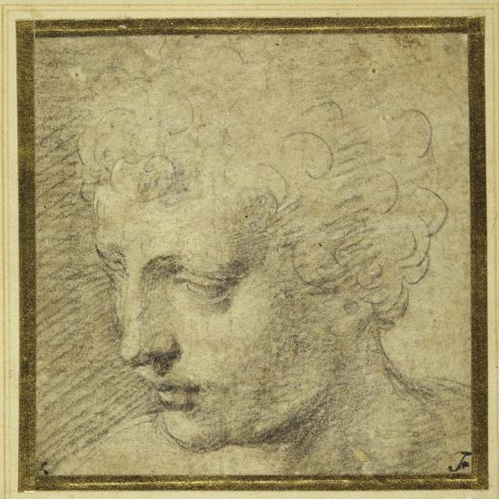 Head of a Boy, Nearly in Profile to the Left-Parmigianino-Giclee Print