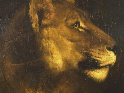 Head of a Lioness-Th?odore G?ricault-Giclee Print