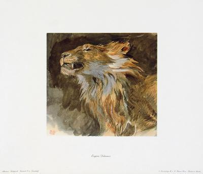 Head of a Lyon-Eugene Delacroix-Collectable Print