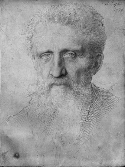 Head of a Man with Long Beard, 1898 (Silverpoint on White Cardboard)-Alphonse Legros-Giclee Print