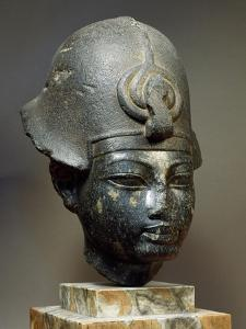 Head of Amenhotep III, Fragment from Diorite Sculpture