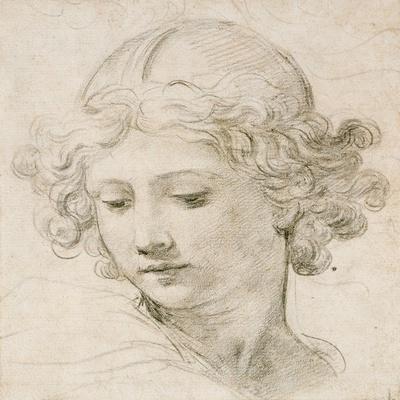 https://imgc.artprintimages.com/img/print/head-of-an-angel-looking-down-to-the-left_u-l-pceukj0.jpg?p=0