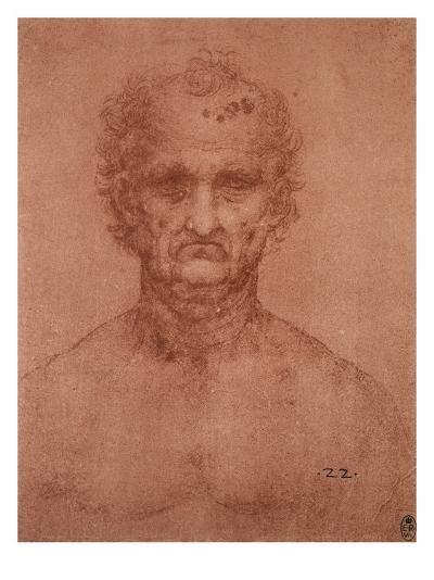 Head of an Old Man, Drawing, Royal Library, Windsor-Leonardo da Vinci-Giclee Print