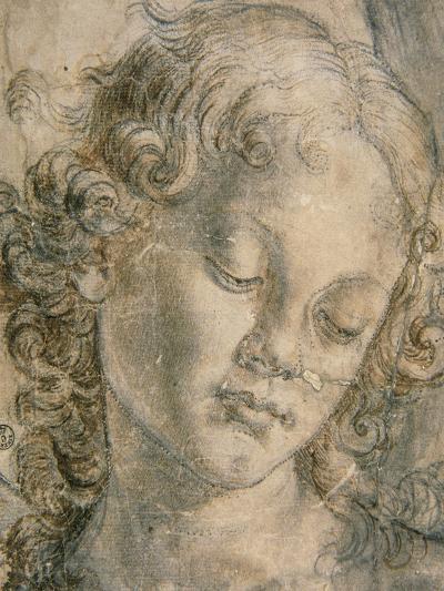 Head of Angel-Andrea del Verrocchio-Giclee Print