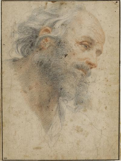 Head of Bearded Man Seen Three-Quarters, Facing Right-Matteo Rosselli-Giclee Print