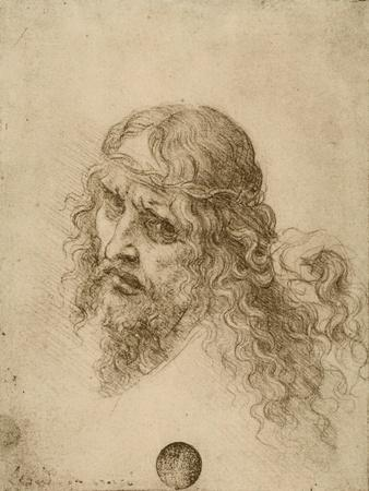 https://imgc.artprintimages.com/img/print/head-of-the-redeemer-drawing-galleries-of-the-academy-venice_u-l-p12jor0.jpg?p=0