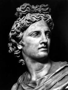 Head of the Statue of Apollo Known as the Belvedere