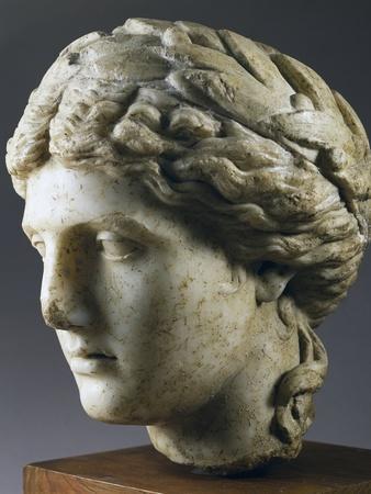 https://imgc.artprintimages.com/img/print/head-of-venus-crowned-with-laurel_u-l-puxryk0.jpg?p=0