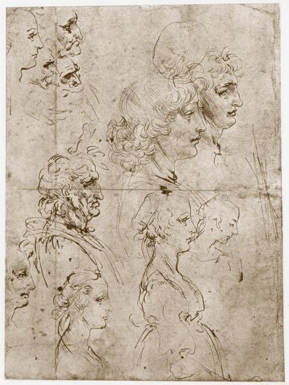 Heads of Girls, Young and Old Men, 1478-1480-Leonardo da Vinci-Giclee Print