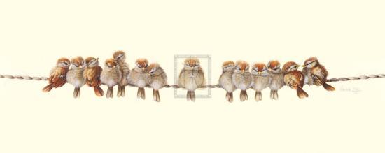 Heads or Tails-Warwick Higgs-Art Print