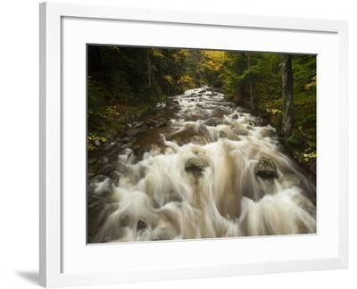 Headwaters of the Ausable River-Michael Melford-Framed Photographic Print
