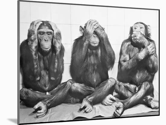 Hear No Evil, See No Evil, Speak No Evil-null-Mounted Photographic Print
