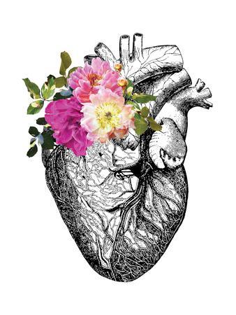 https://imgc.artprintimages.com/img/print/heart-anatomical-floral_u-l-f9ealz0.jpg?p=0