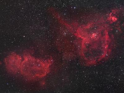 Heart and Soul Nebulae in Cassiopeia, Ici805 and Ici848-Robert Gendler-Photographic Print