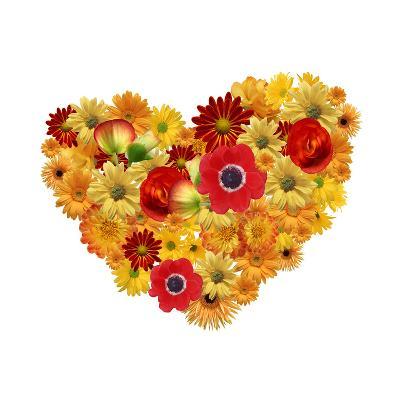Heart. Chamomile Flowers Background-Anna Ismagilova-Photographic Print