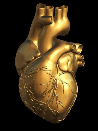 Heart of Gold-Roger Harris-Photographic Print